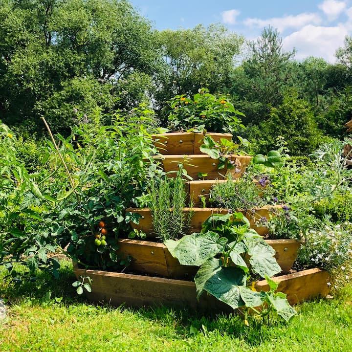 Landgarten Ohrdruf, Produkt, Biosphärenpyramidenbeete, Hochbeet